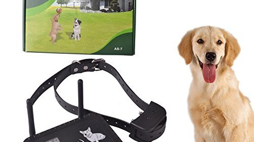 Okpet Wireless Electric Dog Fence System Outdoor Invisible