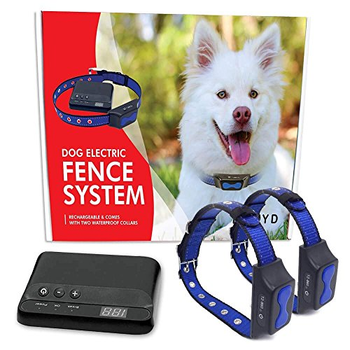 Floyd Invisible Electric Fence For Dogs Perimeter Fence